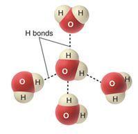 الروابط الهيدروجينية للماء