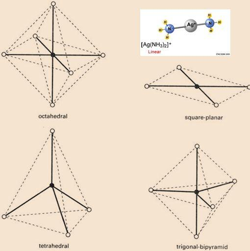 الشكل الفراغي للمعقدات